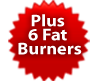 Plus 6 Fat Burners