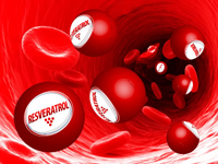 100% resveratrol to your bloodstream