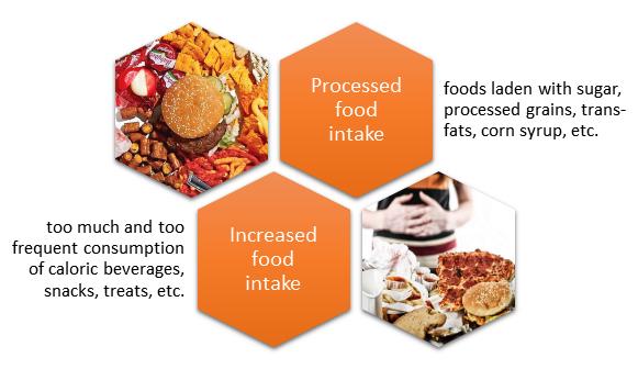 Standard western diet