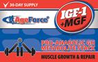 IGF-1 + MGF