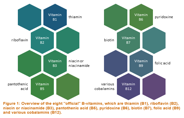 Eight official B vitamins